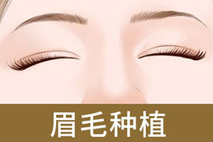 青岛眉毛种植整形哪家知名 眉毛种植多久能见效
