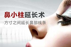 抬高鼻梁从延长鼻小柱开始 鼻小柱延长多少钱